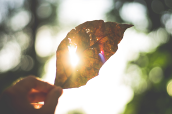 Five Tips to letting your light shine through